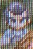 toh_13.jpg